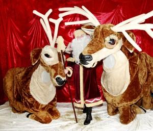 Santa & 2 Reindeer - big